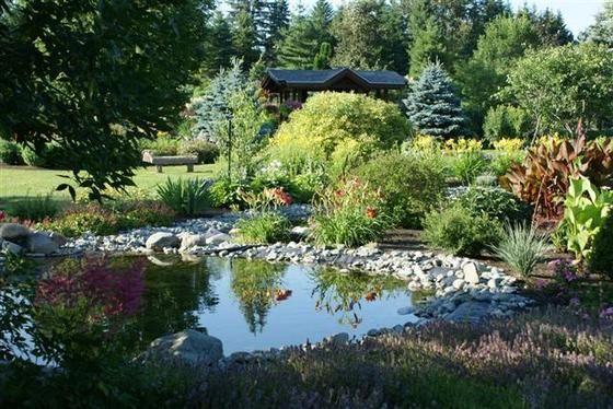 Parc botanique - À fleur d'eau