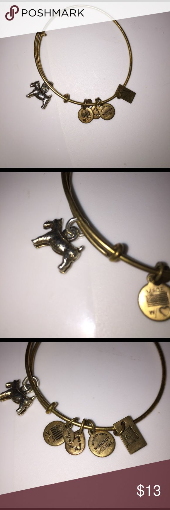 Limited Alex and Ani Bangle With Charms This is a super cute alex and ani bracelet. There are 5 charms on this bracelet. The main charm is a little dog. It is slightly misshapen and it is starting to rust. This is why it is such a low price. Alex & Ani Jewelry Bracelets