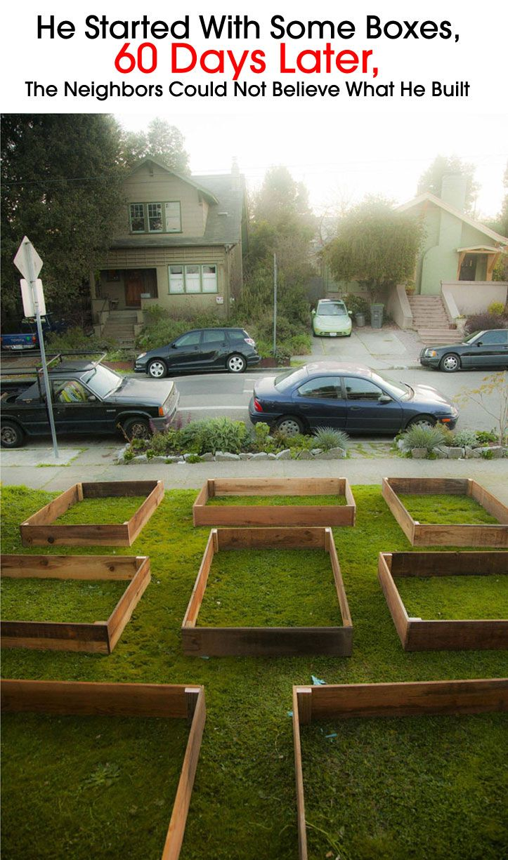 He Started With Some Boxes, 60 Days Later, The Neighbors Could Not Believe What He Built ~ Be Creative
