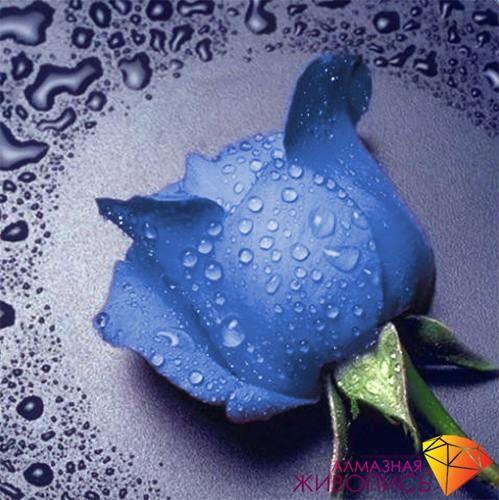 Картина стразами (набор) Алмазная живопись 15 Синяя роза