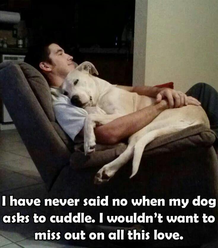 Cuddles With Big White Fluffy Dog