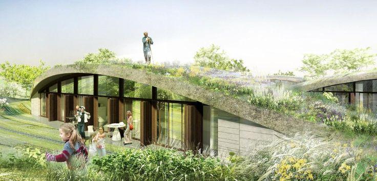 La maison intégrée à son environnement : faire pousser des fleurs sur le toît, j'adore :)