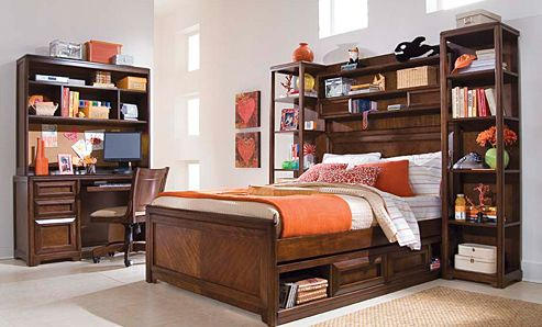 Boysu0027 Bed Concept Elite Expressions Bookcase Storage Bed   Modern   Beds      By Hayneedle