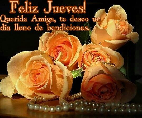 Feliz jueves! Querida Amiga, te deseo un día lleno de bendiciones.