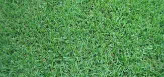 M3 Artificial Grass & Turf Installation Miami – Get artificial grass here!