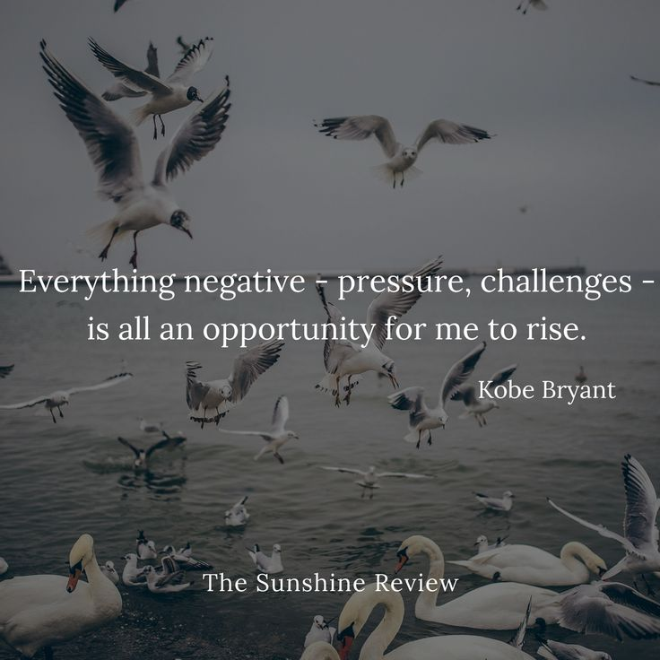 Do not let challenges bring you down. Use them as fuel to keep going!