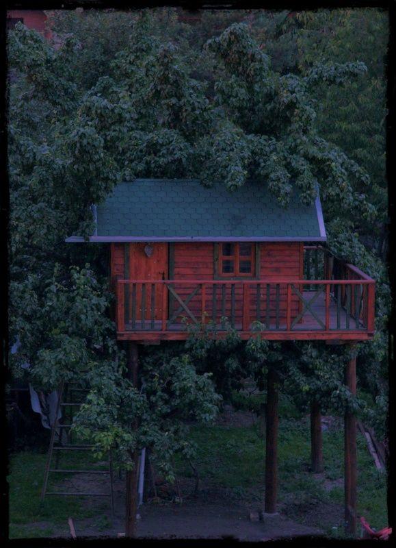 Domeček na stromě - tree house  Opravdu to není model :)