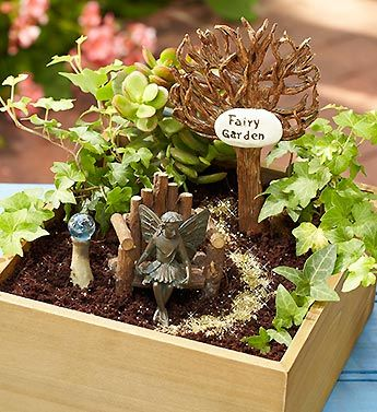 Sprinkle fairy dust throughout this enchanting miniature garden fit for a magical little fairy!