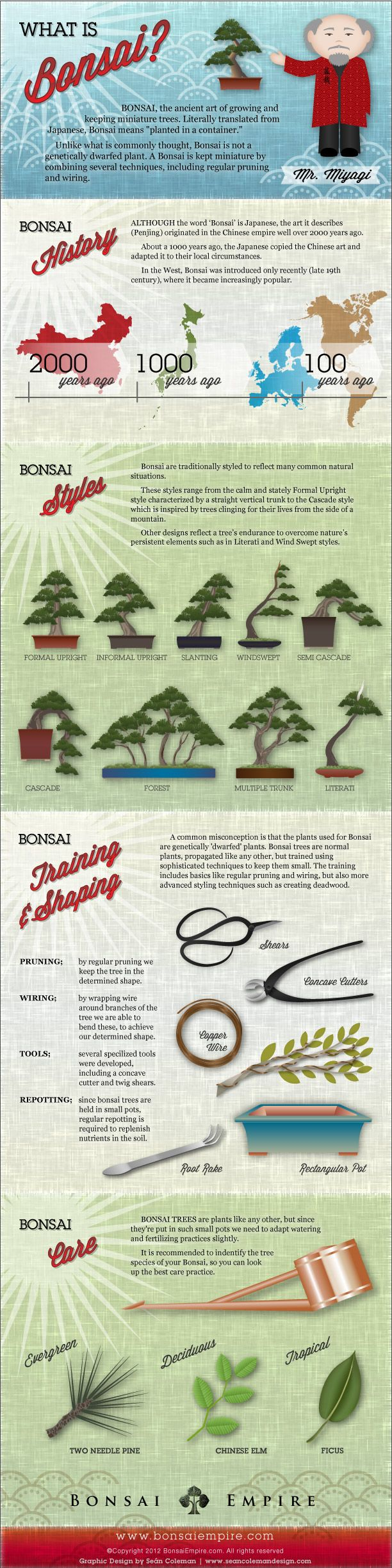 bonsai inforgraphic by Sean Coleman for Bonsai Empire a great introduction to the plants, tools, and methods used in bonsai artistry.