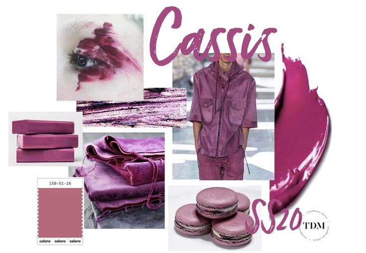 Cassis.Color Trend 2020 | ColorPalette in 2019 | Color ...
