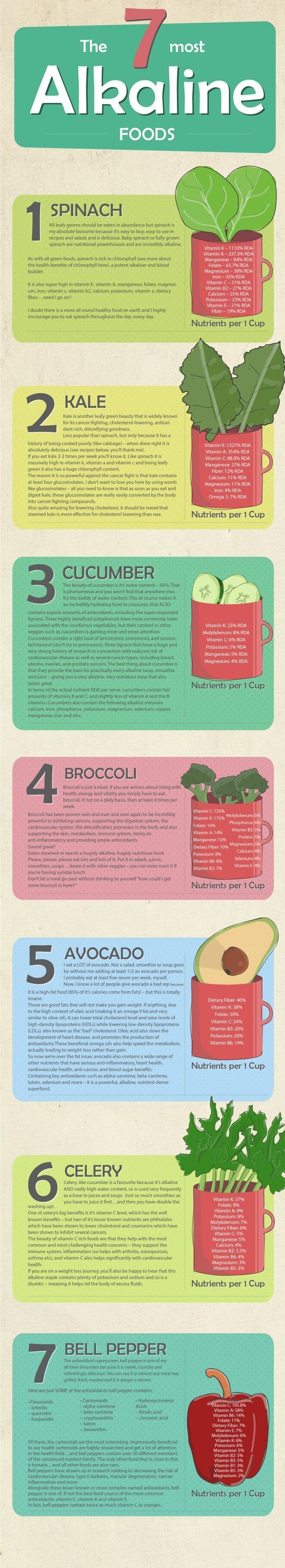 "7 Most Alkaline Foods : "" When you eat alkaline foods, your body tends to emulsify fat, thus making it far easier for the body to digest and eliminate toxins. "" Here is a handy little infographic found on Pinterest featuring some of the most alkaline foods on the planet (7). *** Subscribe via email for […]"