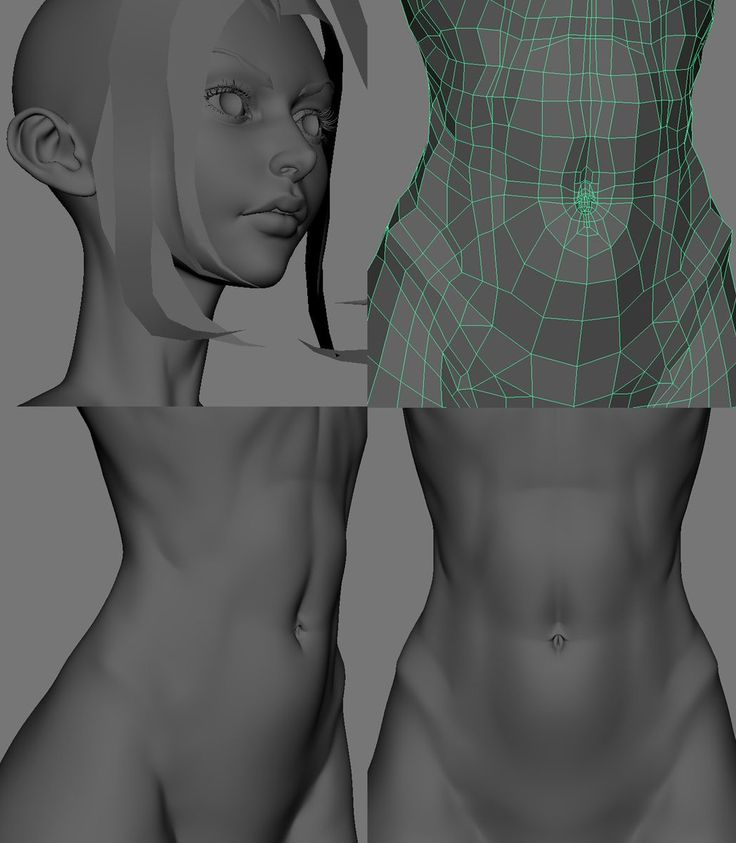 Female body topology reference