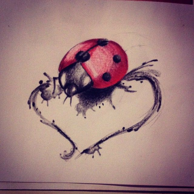 tattoo #tattoos #draw #watercolor #heart #ladybug ladybugs #bug #bugs ...