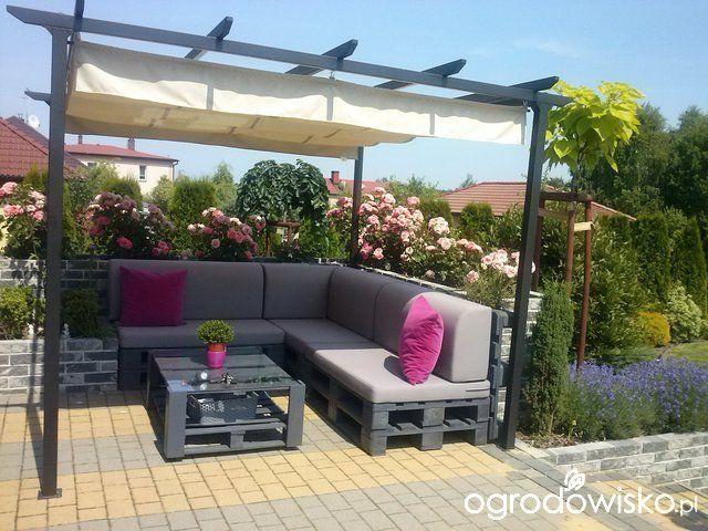 Jestem sobie ogrodniczka hop sa, sa - strona 16 - Forum ogrodnicze - Ogrodowisko