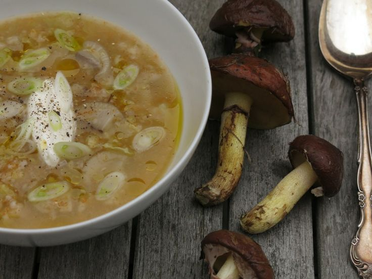 A recipe for Slippery Jack-Cabbage Soup