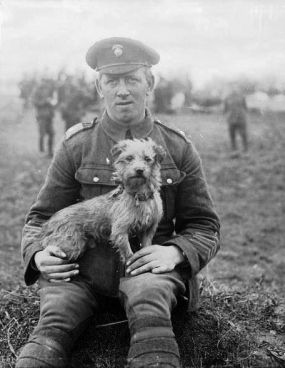 'Sammy', the mascot of the Northumberland Fusiliers, was gassed during the Second Battle of Ypres which began on 22 April 1915. Q 1451