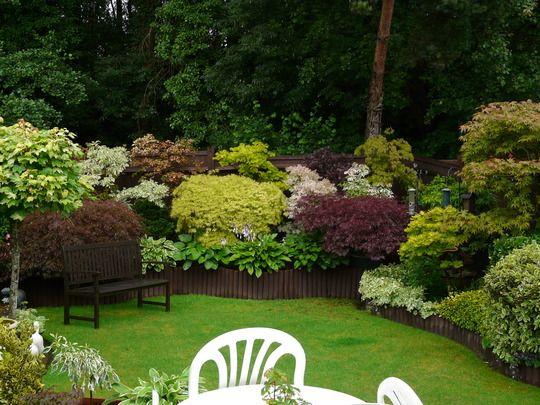 14 best images about back garden ideas on pinterest for Wet garden designs
