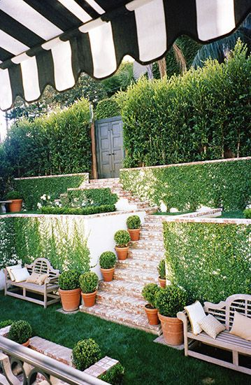 Potted plants and ivy make for a great landscape.
