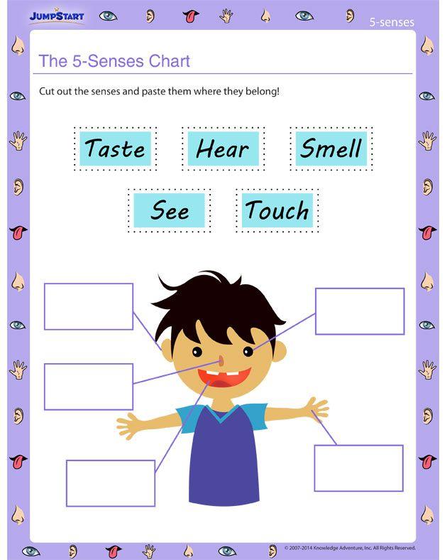 69 best images about 5 senses on pinterest worksheets for kindergarten science worksheets and. Black Bedroom Furniture Sets. Home Design Ideas