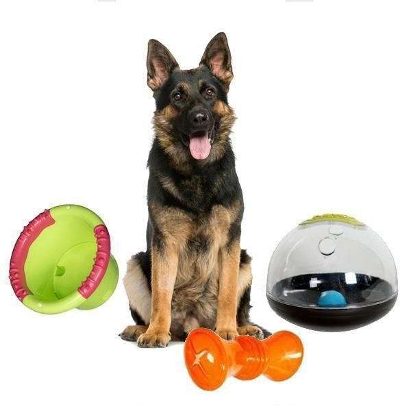 Brainiac Pack Assortment Of Interactive Dog Toys Smart Dog