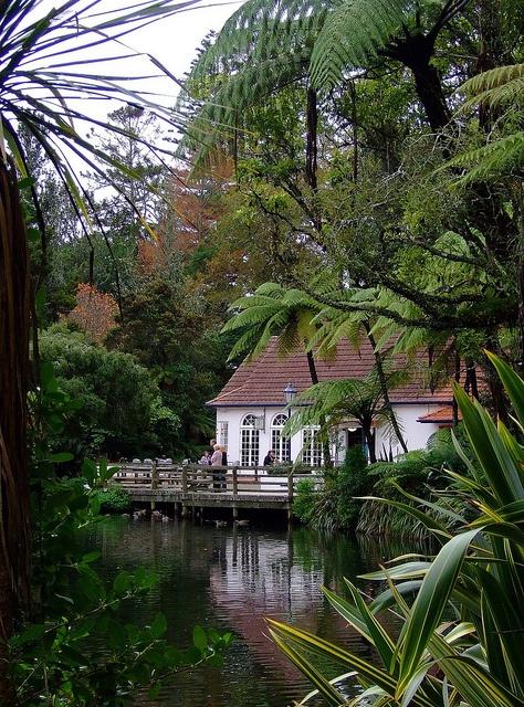 Teahouse on the Lake, Pukekura Park,  New Plymouth. . . .Such a beautiful, amazing park.