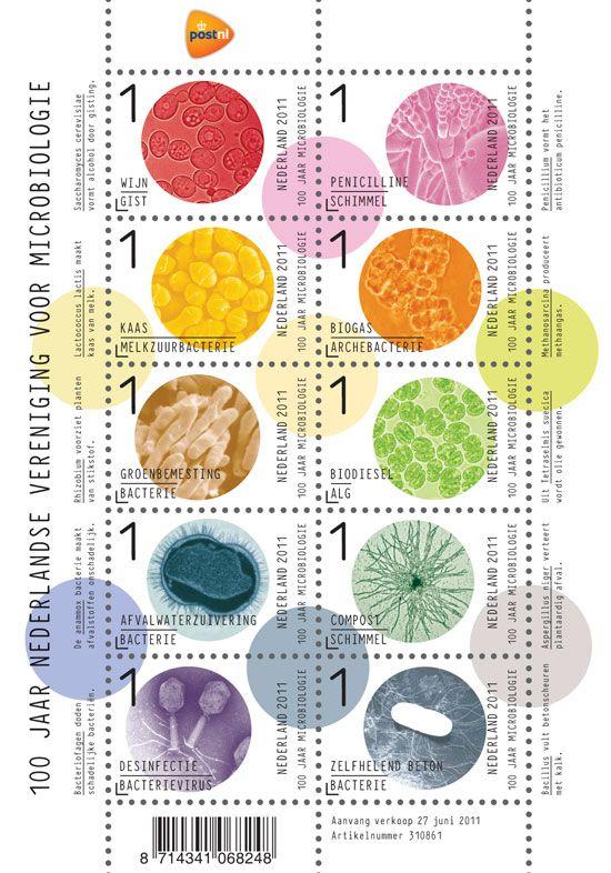 100-jr-nl-vereniging-microbiologie-vel