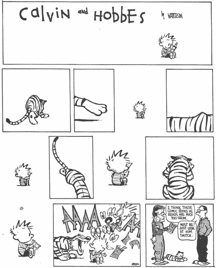 Calvin and Hobbes Daily : Photo