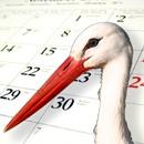 Te mueres por saber cuándo nacerá tu bebé? Dale click para llegar a una calculadora de la fecha de parto!