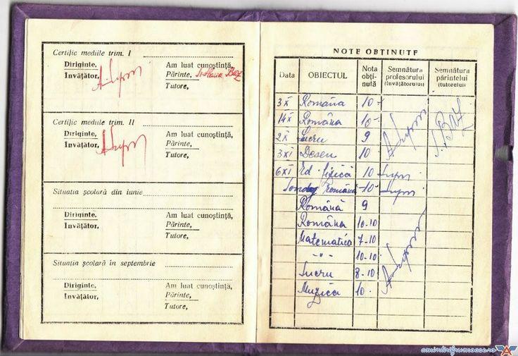 School grades, report book (this is not mine), Carnet de note