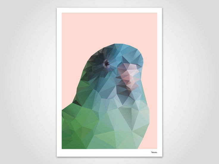 Papagei / Bilder, Poster, Kunstdruck, Deko, Bild, Kunst, Kunstdrucke, Skandinavisch, Papier, Valentinstag, Frühling, Sommer, Vogel, Tiere
