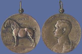 Belgisch trekpaard, officiële website van het stamboek. Bronzen medaille met paard en Koning Albert I der Belgen.