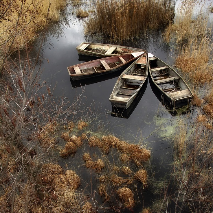gathering of boatsBrown Earth, Korzhonov Daniil, Inspiration, Amazing Photography, Daniel Korzhonov, Favorite Photos, Boats And, Art Attack, Friends By Daniel