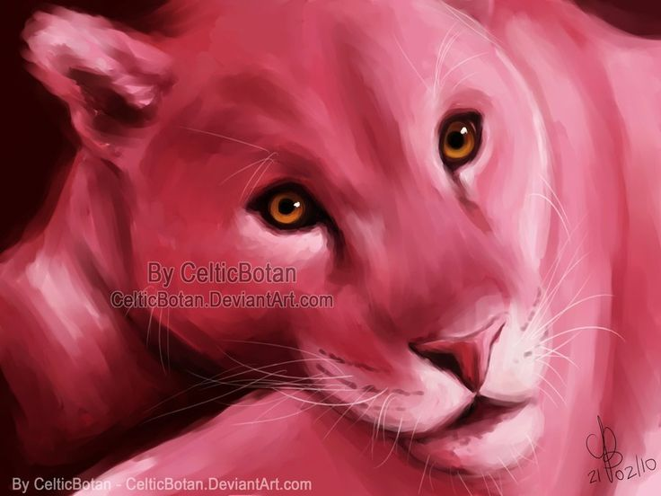 PINK by CelticBotan.deviantart.com on @DeviantArt