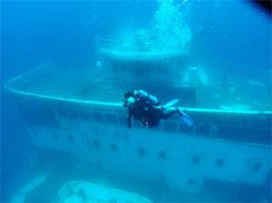 Get answers from Innerspace Dive Center staff and past visitors. Description from tripadvisor.com. I searched for this on bing.com/images