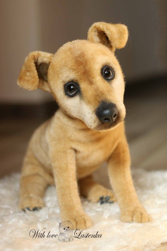 Portrait Realistic Dog Ooak Artist Collectible Teddy Dog Handmade