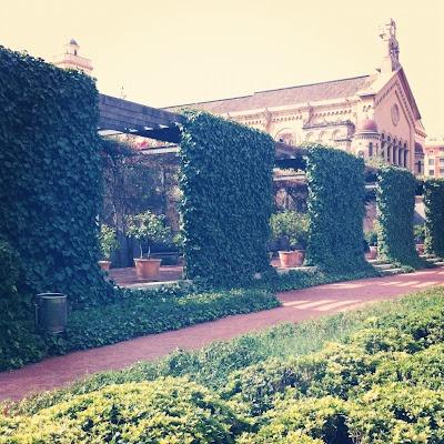 El jard n de las hesp rides valencia foto creaciones for Jardin hesperides