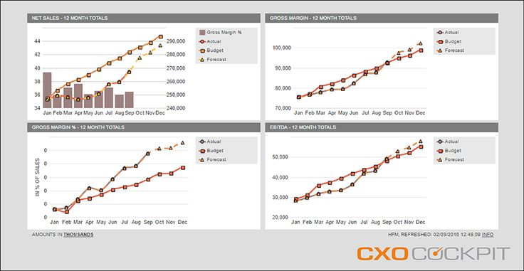 MULTIPLE BAR & LINE CHARTS This is the ideal template to show trends for different accounts (and/or members from other dimensions). You can mix line-charts and bar-charts and you can display up to 6 axis-frames in one report.