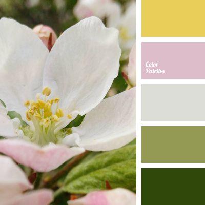 Color Palette #2823