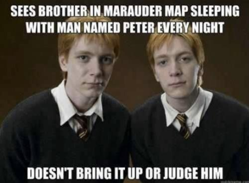wait... what?Thoughts, Laugh, Fred, Harrypotter, Funny, So True, Weasleytwin, Harry Potter, Weasley Twins