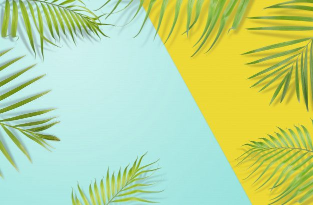 Tropical Palm Leaves On Yellow And Light Blue Background Minimal Nature Aesthetic Desktop Wallpaper Art Wallpaper Iphone Laptop Wallpaper Desktop Wallpapers
