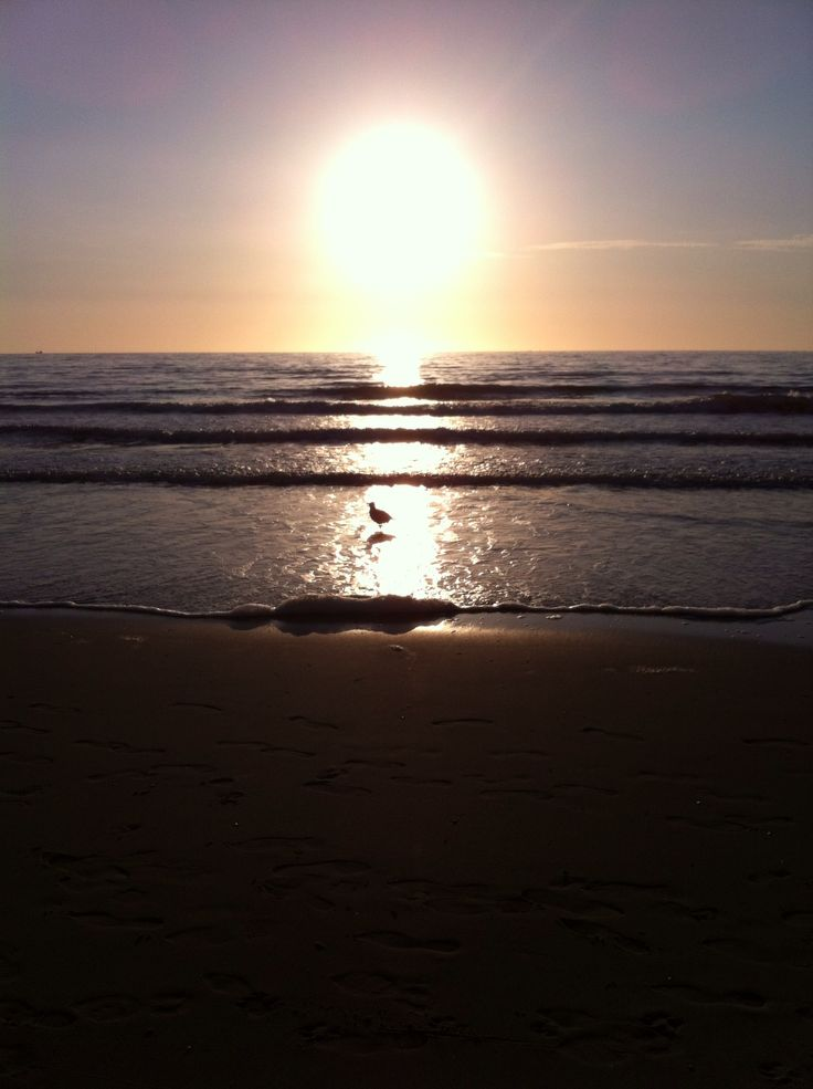 Strand Scheveningen, zonsondergang