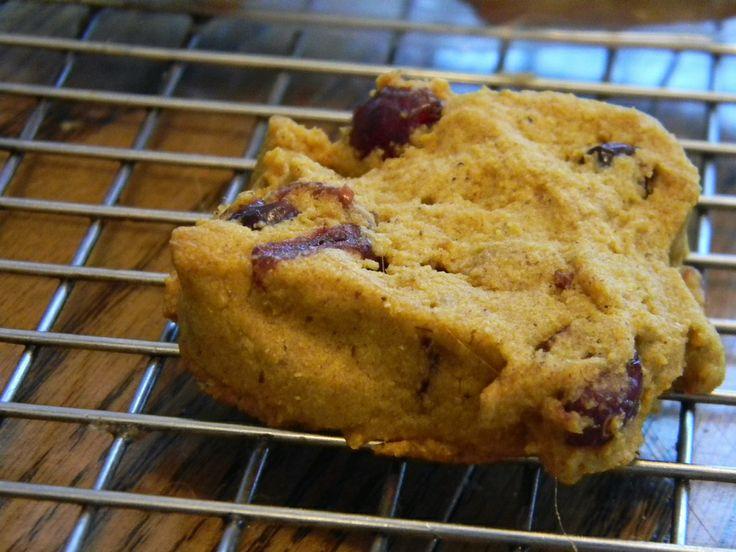 cake gluten free honey spice madeleines door gluten free girl and the ...