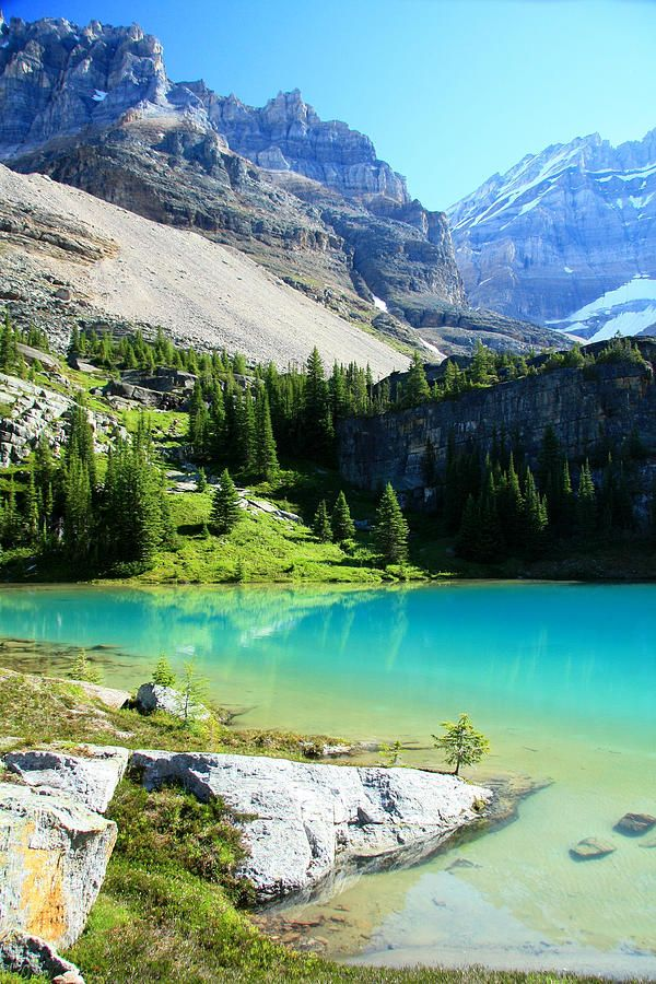 ✯ Lake Victoria is a little gem in the Lake O'Hara area of Yoho National Park, Canada