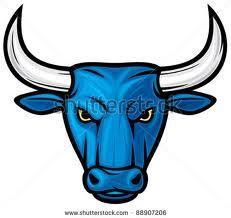 blou bulle blue bulls - Google Search