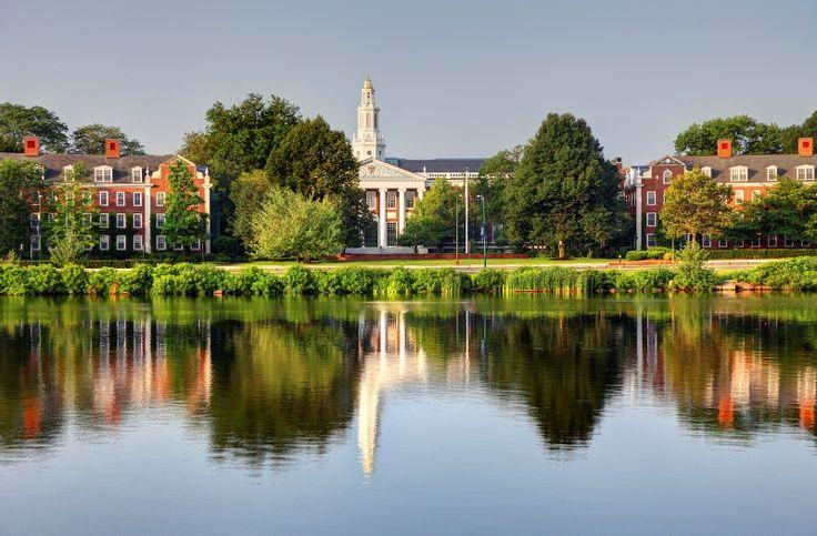 17 cursos oferecidos pela Harvard para fazer on-line e de graça