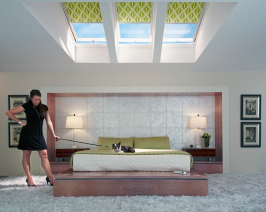 Top 25 ideas about skylights home improvement on for Velux window blinds remote control
