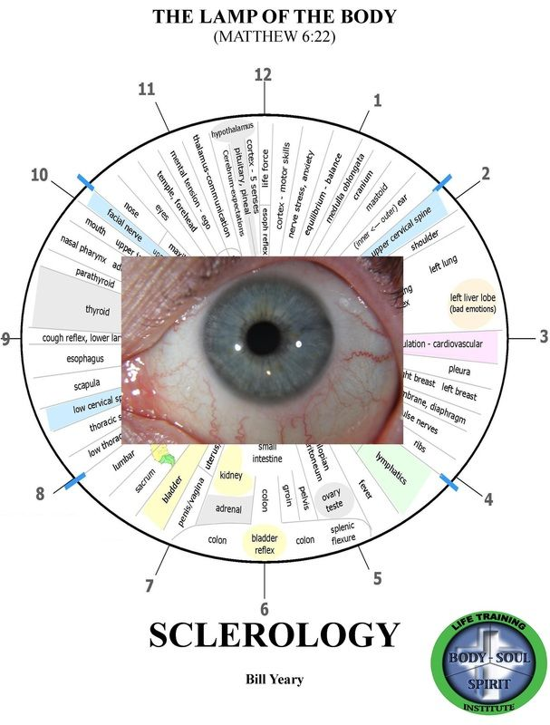 iridology pdf - Buscar con Google