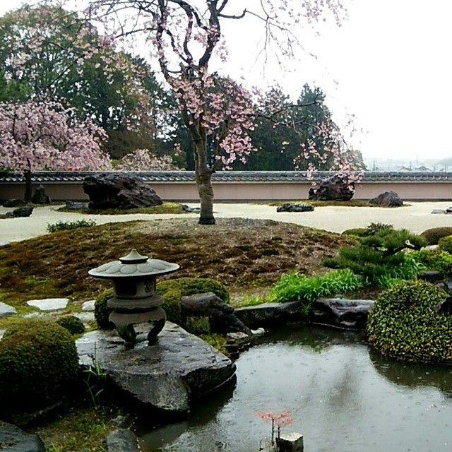 #京都#正法寺#shoboji#寺#temple #kyoto#桜#さくら#サクラ#sakura#庭#庭園#japan#happy#love#japanfocus#viewpoint#beautiful#amazing#和#wa#view#spring#garden#awesome#great#goodtimes