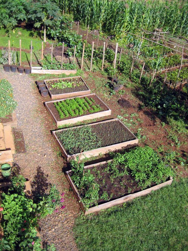 Raised Bed Garden Design: Gardens And Outside Goodies