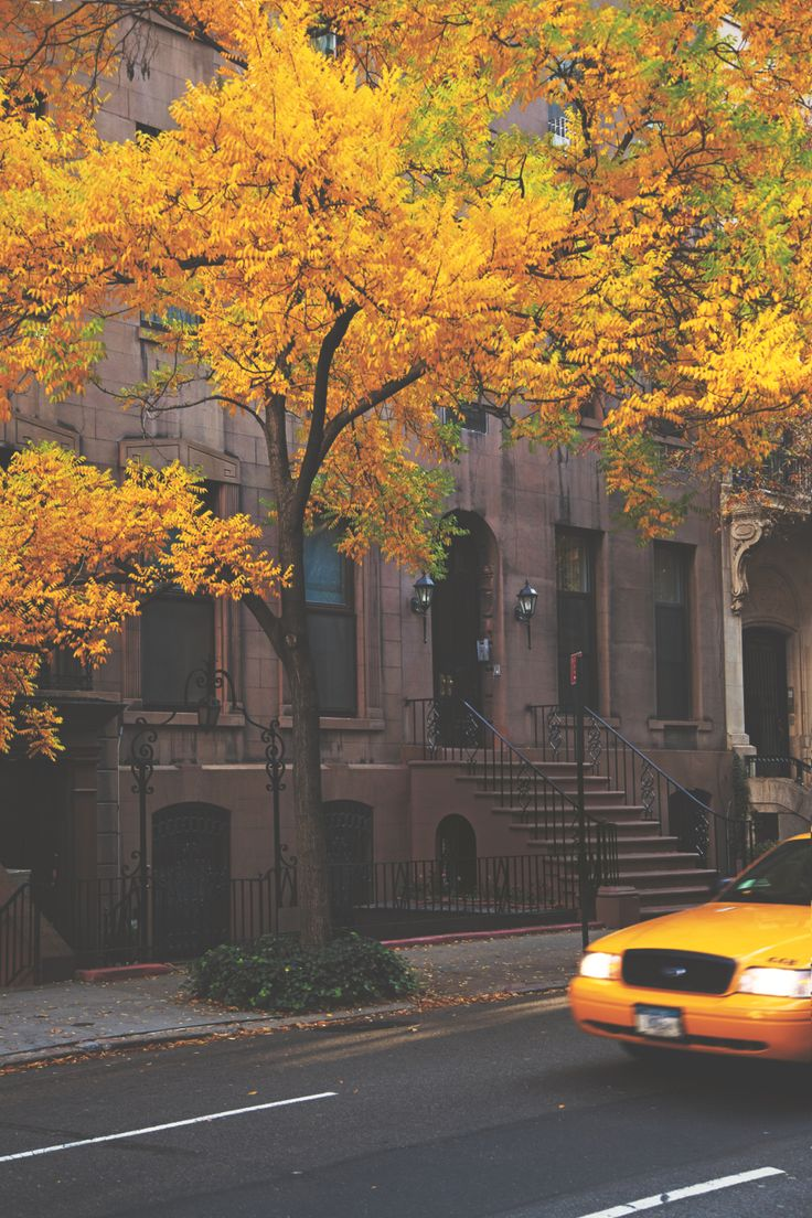 New York City in the fall. I LOVE the taxi in this photo. It's classic city: